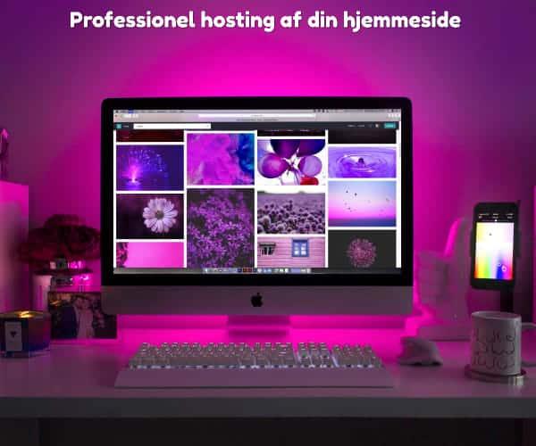 Professionel hosting af din hjemmeside